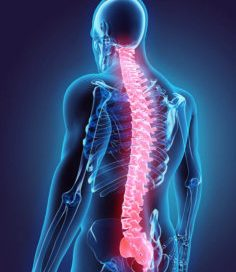 Workers Compensation for Back Injury